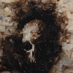 Skull Study (wall art)