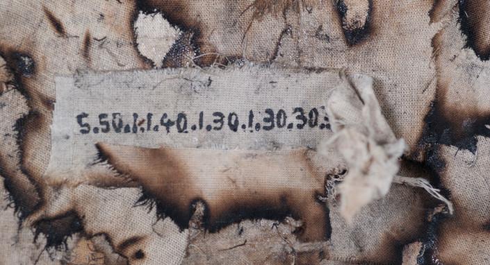 Ashes_detail1.jpg