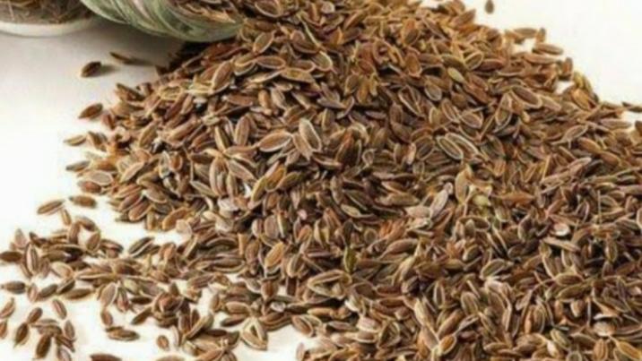 Dill seed organik 1kg