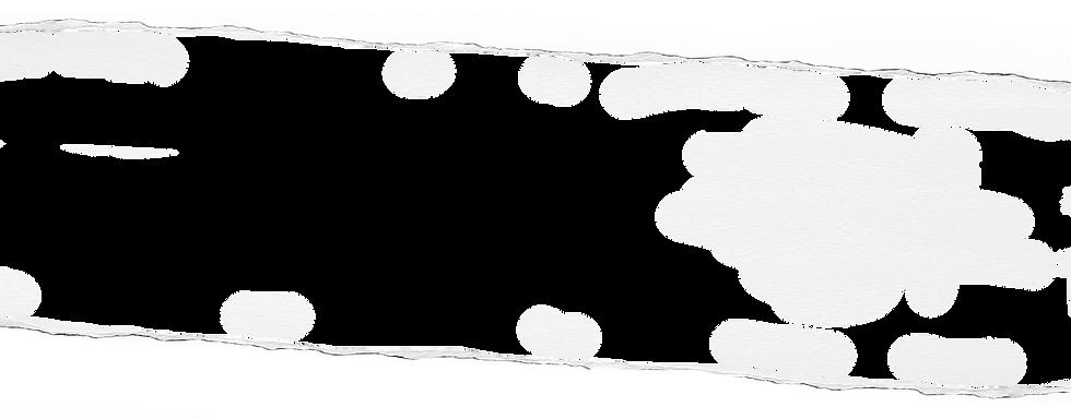 רקע1.png
