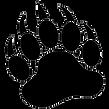 black-bear-paw.png