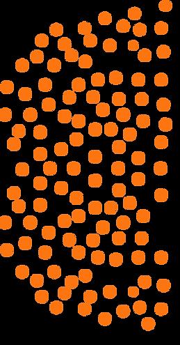puntos-anaranjados-2.png