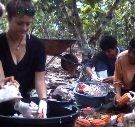 Ecotourism Peruvian Amazon - Cocoa Fruit Plantation - Making artisanal chocolate in Puerto Inca, Huanuco, Peru