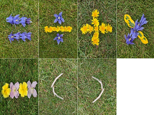 Spring Nature inspired Math Cards: addition, subtraction, divide, multiply