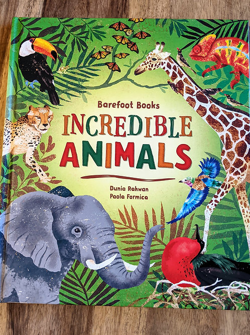 Barefoot Books Incredible Animals by Dunia Rahwan & Paola Formica