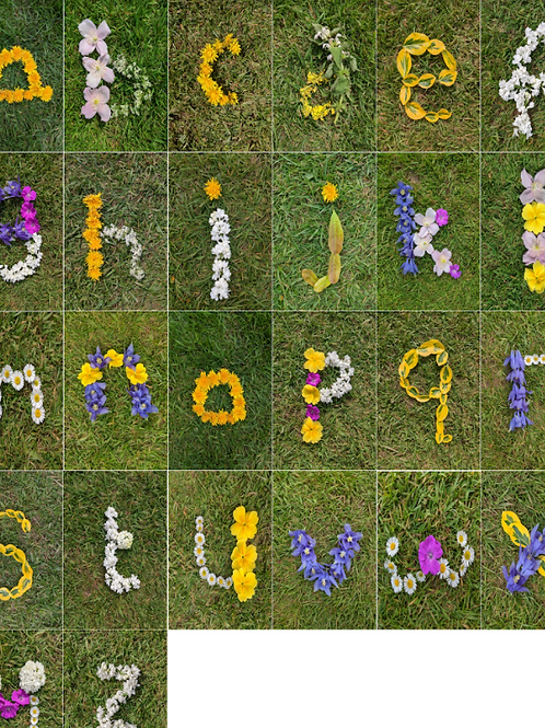 Spring Nature inspired Lowercase / Small Letters to learn words / spelling - Ins