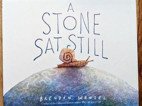 A Stone Sat Still by Brenda Wenzel