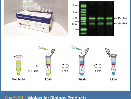 Introducing PuroSPIN™ Nucleic Acid Extraction and Purification Kits