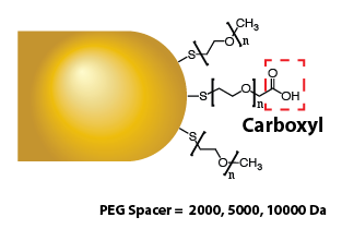 Gold Nanorods - Carboxyl