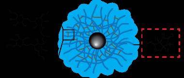 Dextran CLIO Magnetic Nanoparticles - Biotin