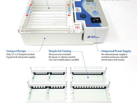 New Product Launch: PuroGEL™ Compact Gel Electrophoresis System
