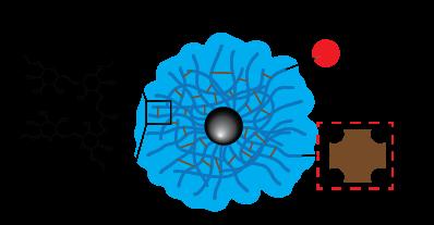 Dextran CLIO Magnetic Nanoparticles - Streptavidin, Fluorescent Dye