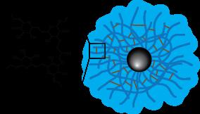 Dextran CLIO Magnetic Nanoparticles