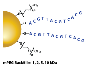 Gold Nanoparticles - DNA (Single-Stranded)