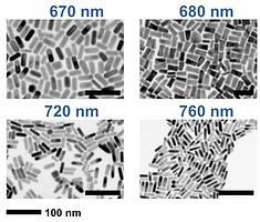 Gold nanorod nanoparticle