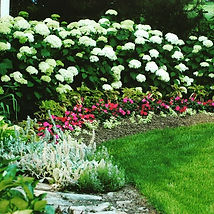 A beautiful flower bed border needs the