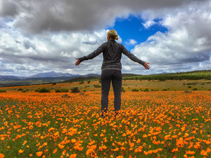 When the desert flowers