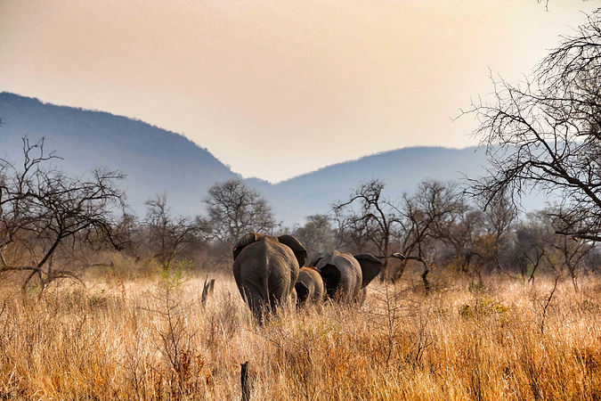 Slow Travel Africa - city experiences