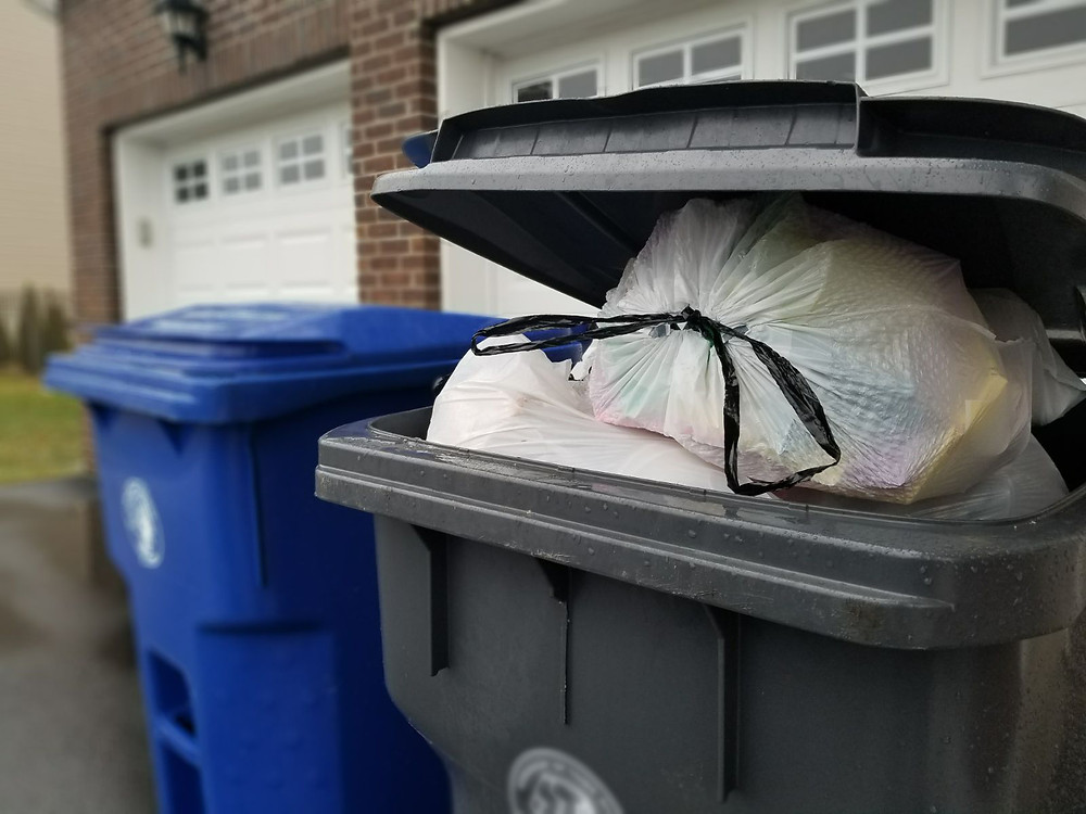 Trash Bin Cleaning near me how to clean dirty garbage can rockland county NY garbage can cleaning Mr. Can trash can cleaning New York New Jersey