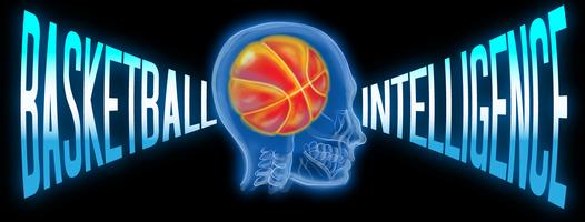 basketball_intelligence_webbanner.png