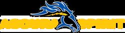 ahslinear-logo.png
