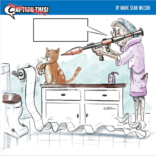 QCTC_1_toilet paper cat_contest.jpg