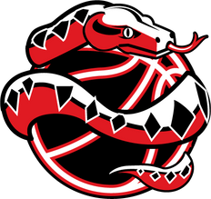 vipers-tvlbsktbl-logo.png