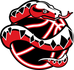 vipers-tvlbsktbl-logo.png
