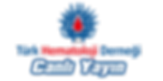 thd-dijital-akademi-logo.png