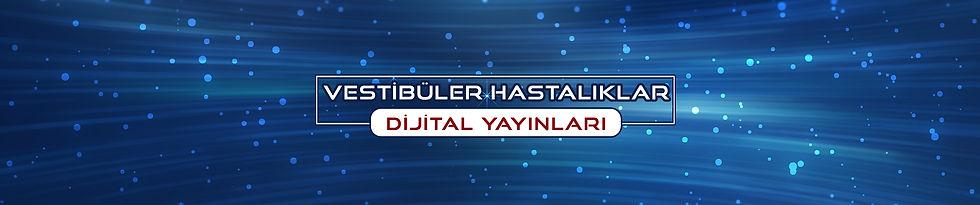 vestibuler-dijital-banner.jpg