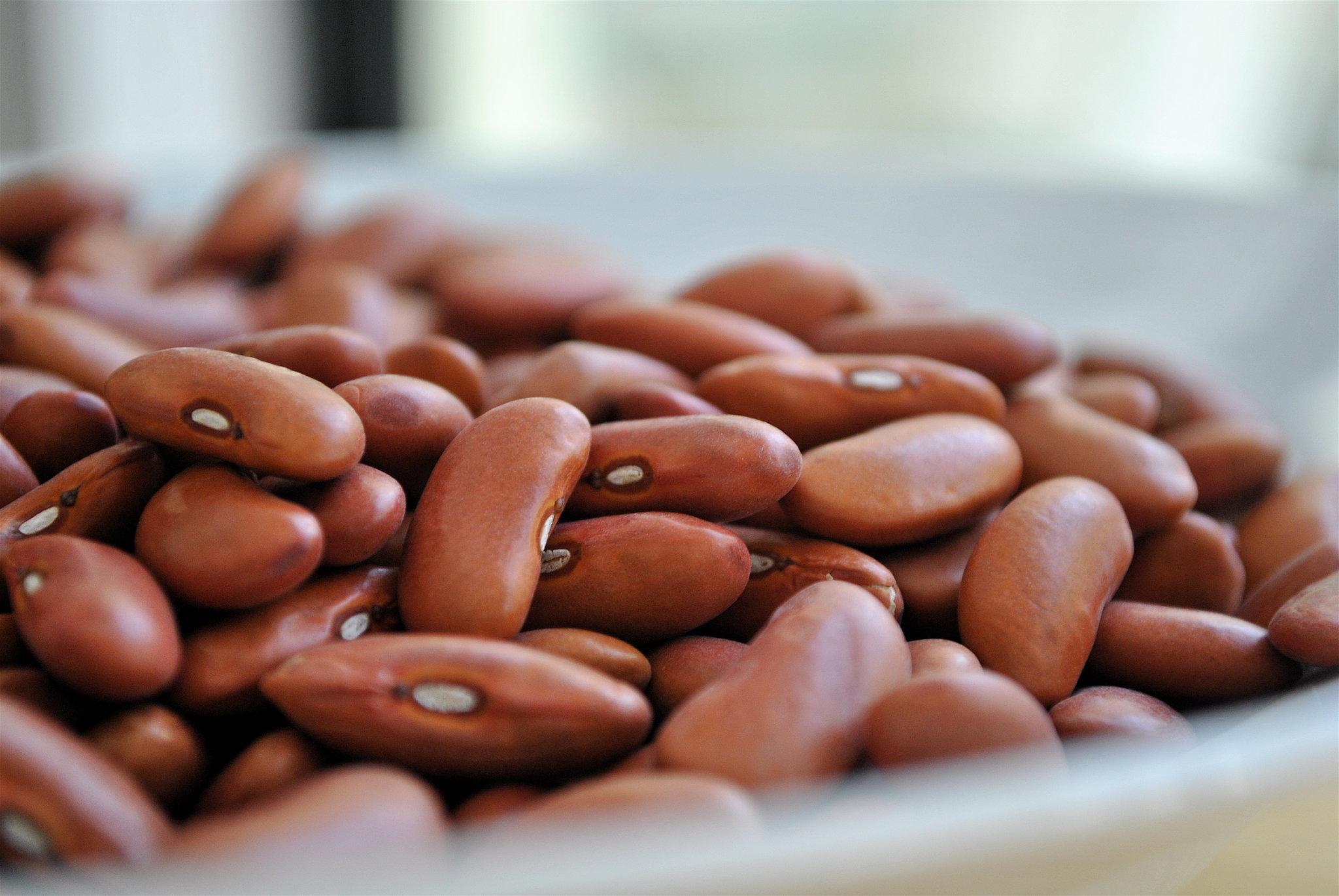 8fc42efd36aa3cb8_beans.xxxlarge_2x