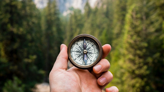 Rediscover Purpose, Energise Change