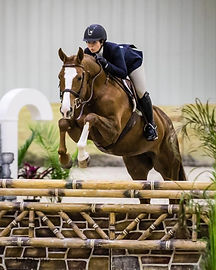 Holly Helbig at Hawthorne Hill Horse Riding Hunter Jumper Veterinarian Dublin OH Equine DVM