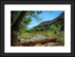 virgin-river-at-zion-framed.jpg