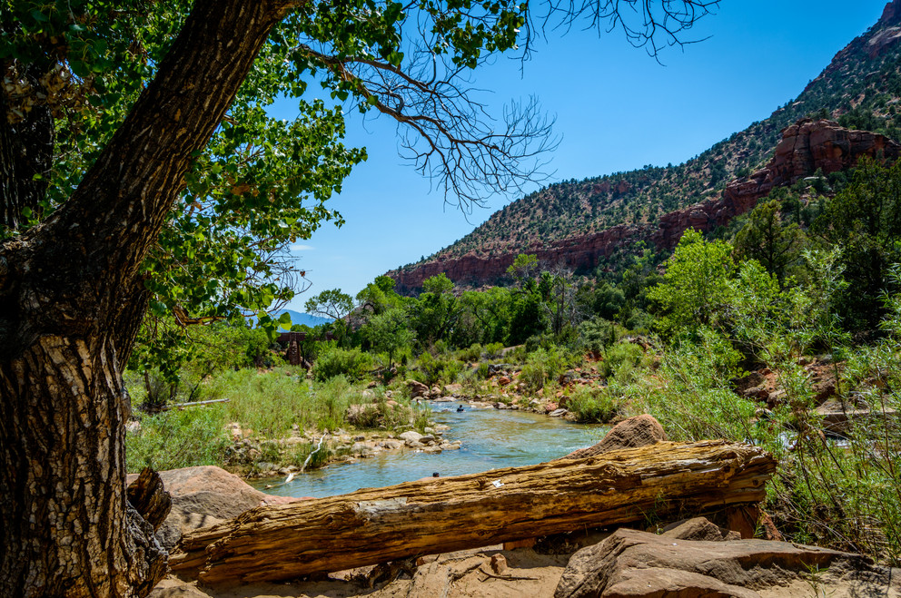The Virgin River in Zion
