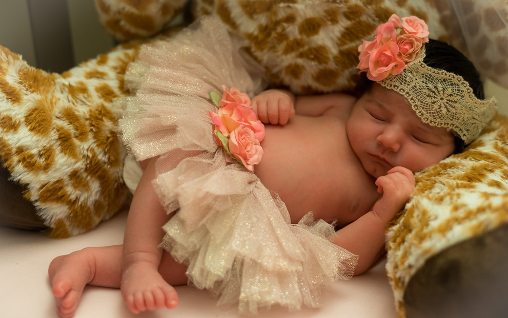 Newborn photography in Milford, CT