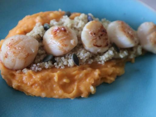 Noix de St Jacques, purée de patate douce et son quinoa croquant