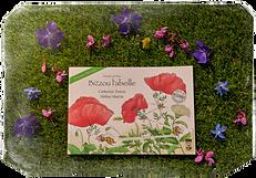Livre Bizzou l'abeille ferme des 4 saisons