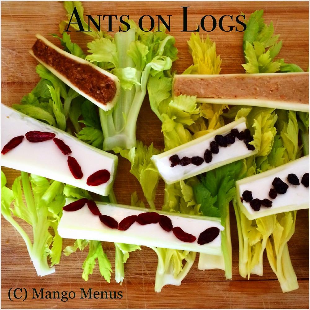 Ants on Logs