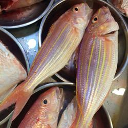 Ap Lei Chau Wet Market