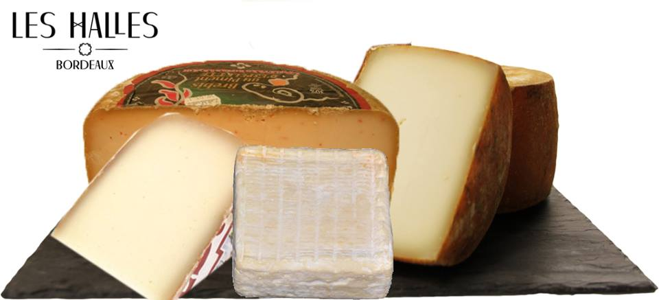 French Sheeps' Cheese