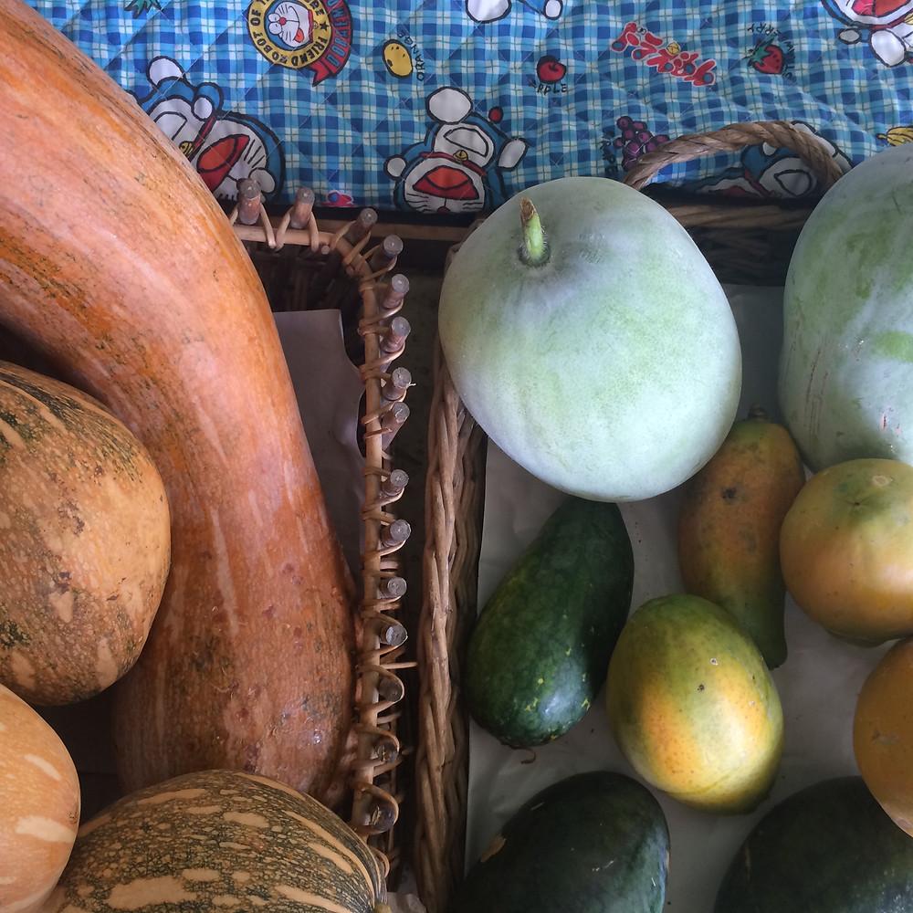 Homegrown Foods Shop at Zen Organic Farm