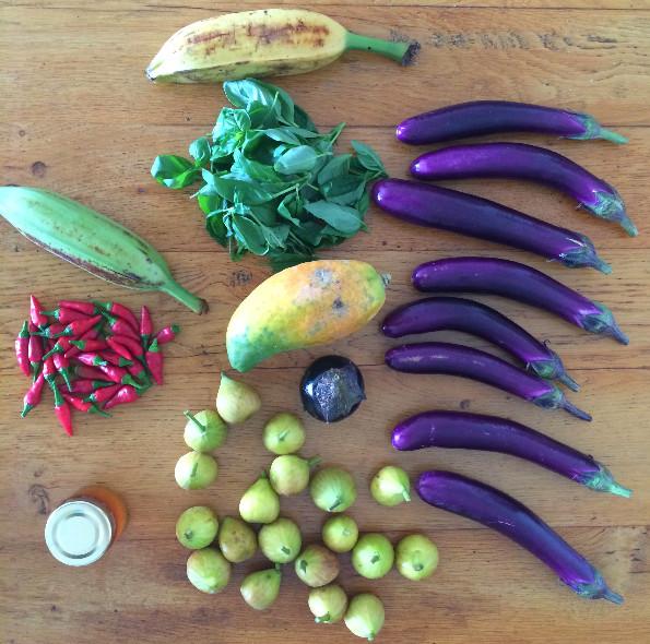 Homegrown Foods Self-Select organic veggies HK