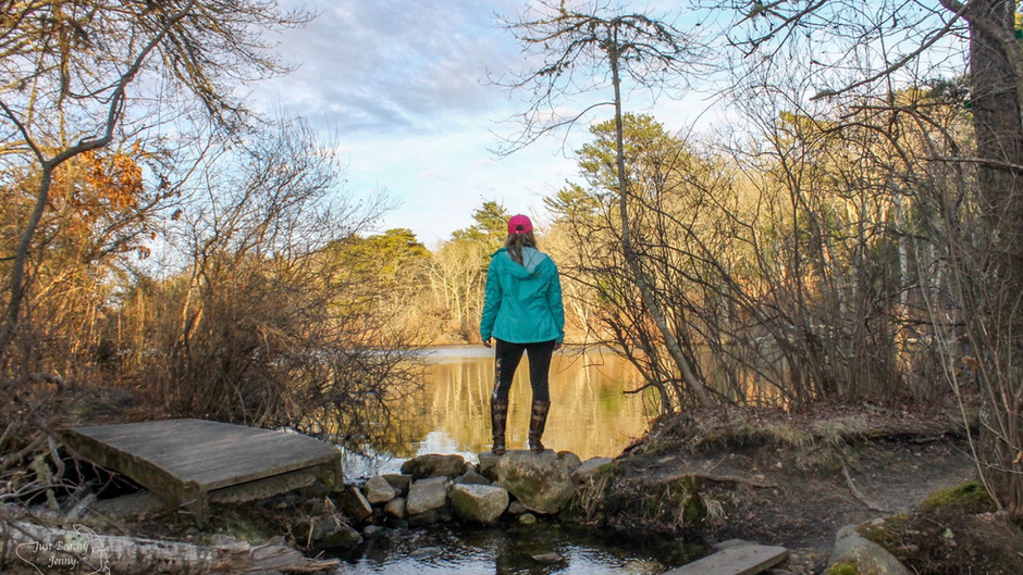Exploring Four Ponds Where Peepers Ring Spring In