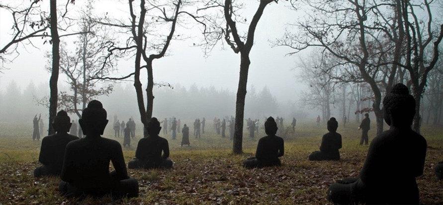 Plum-Vilage-Bhuddha-Hill-800w (1).jpg