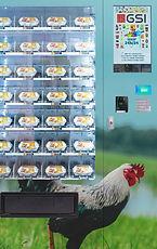 distributeur automatique oeufs
