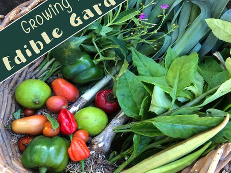 6 Insider Tips for Growing an Incredible, Edible Garden