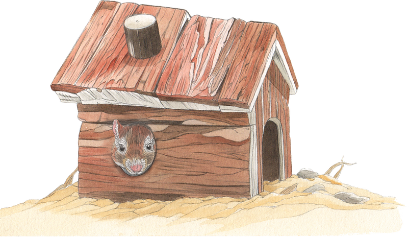 House_With_Gerbil.png