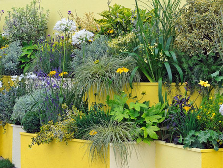 No Yard No Problem – 30 Ways to Garden Anywhere