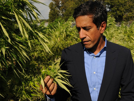"""Dr. Sanjay Gupta speaks about the benefits of CBD : """"The CBD Miracle Drug"""""""